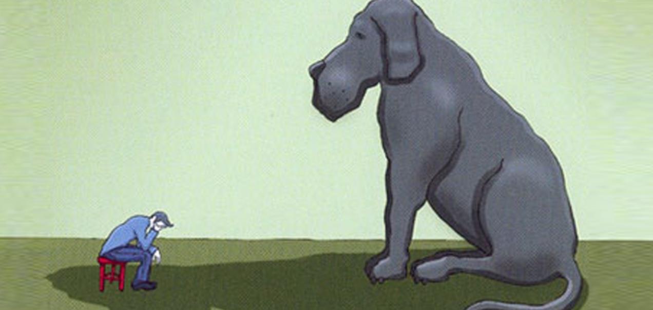 Blackdog-DV