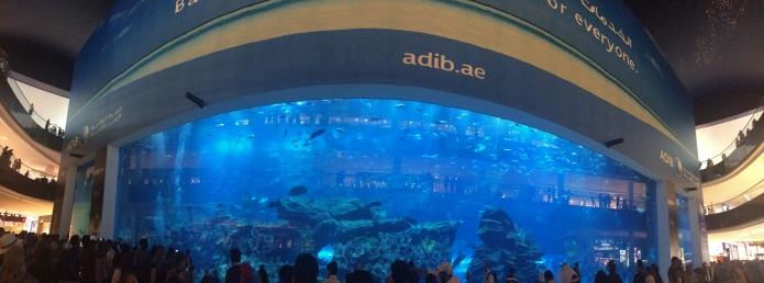 The Aquarium in the Mall. Spanning three levels with tiger sharks and manta rays